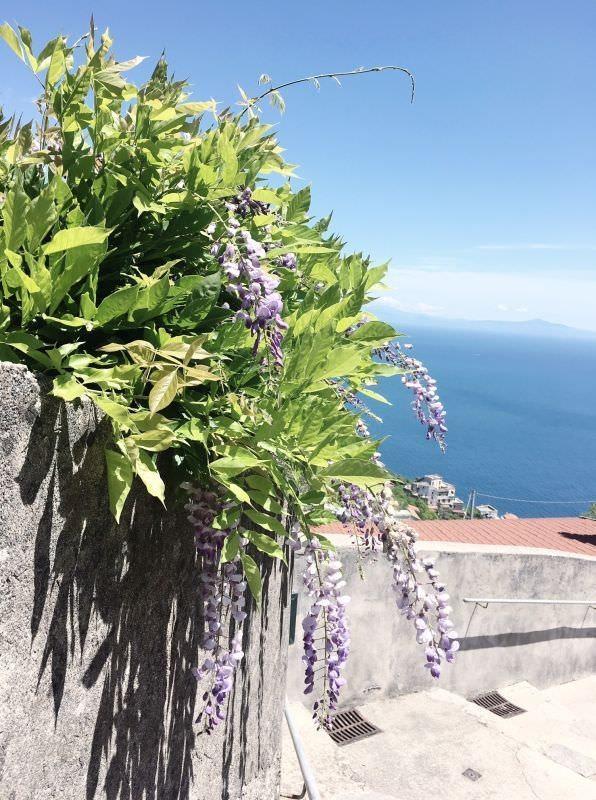 Kampanien-amalfikueste-sueditalien-Ravello-ausflug-lila-panorama-038