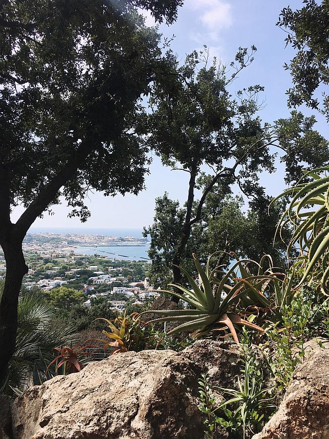Ausblick von den Mortella Gärten, der zu den Ischia Sehenswürdigkeiten zählt
