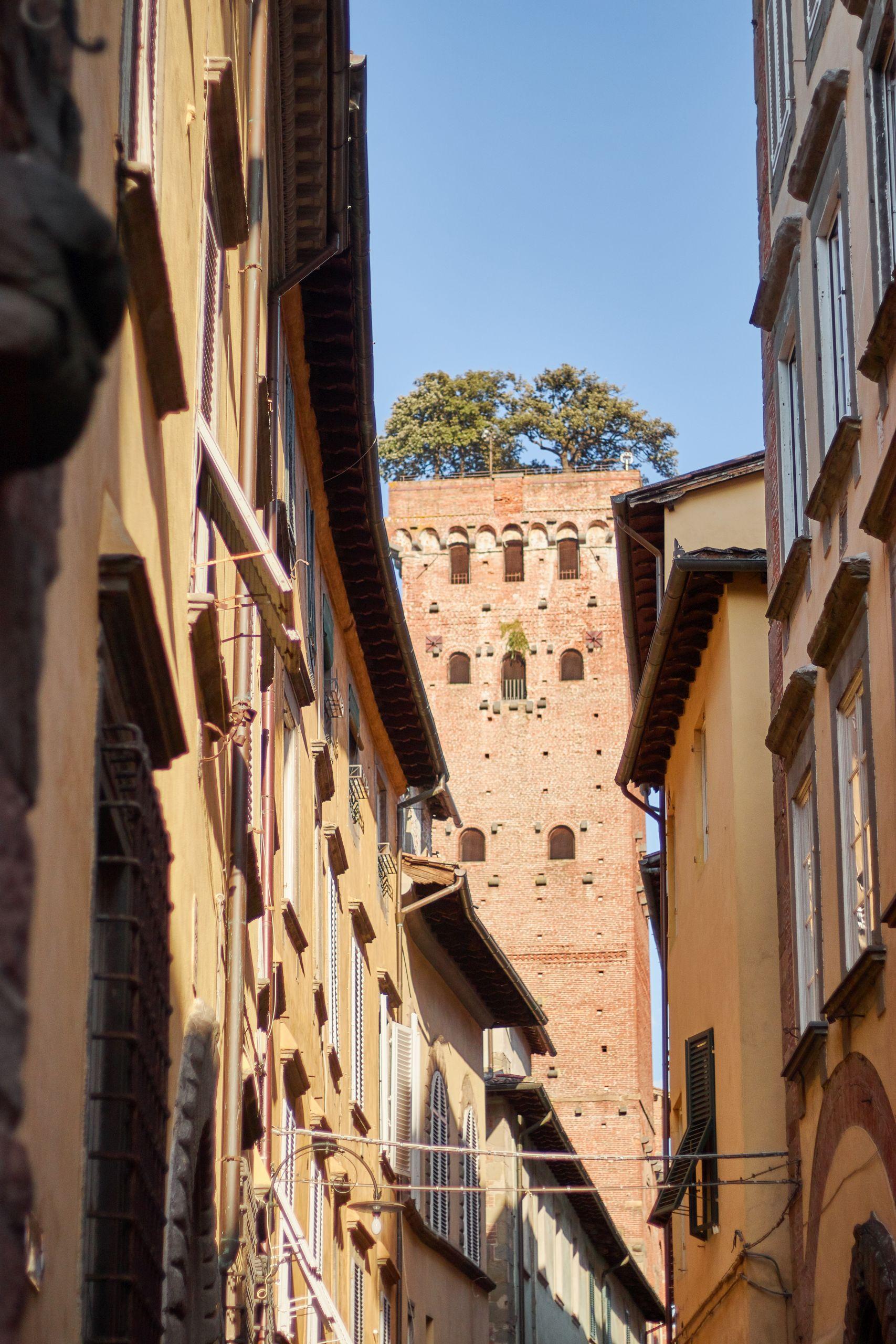 Torre Guinigi in der Altstadt von Lucca beim Toskana Roadtrip